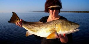 orlando fishing trips, fishing trips orlando, fishing trips in orlando florida, fishing trip orlando, fishing trips in orlando, orlando florida fishing trips, fishing trips near orlando, orlando fishing charters, fishing charters orlando, fishing charters in orlando florida, fishing charters orlando, fishing charters in orlando, orlando florida fishing charters, fishing charters near orlando